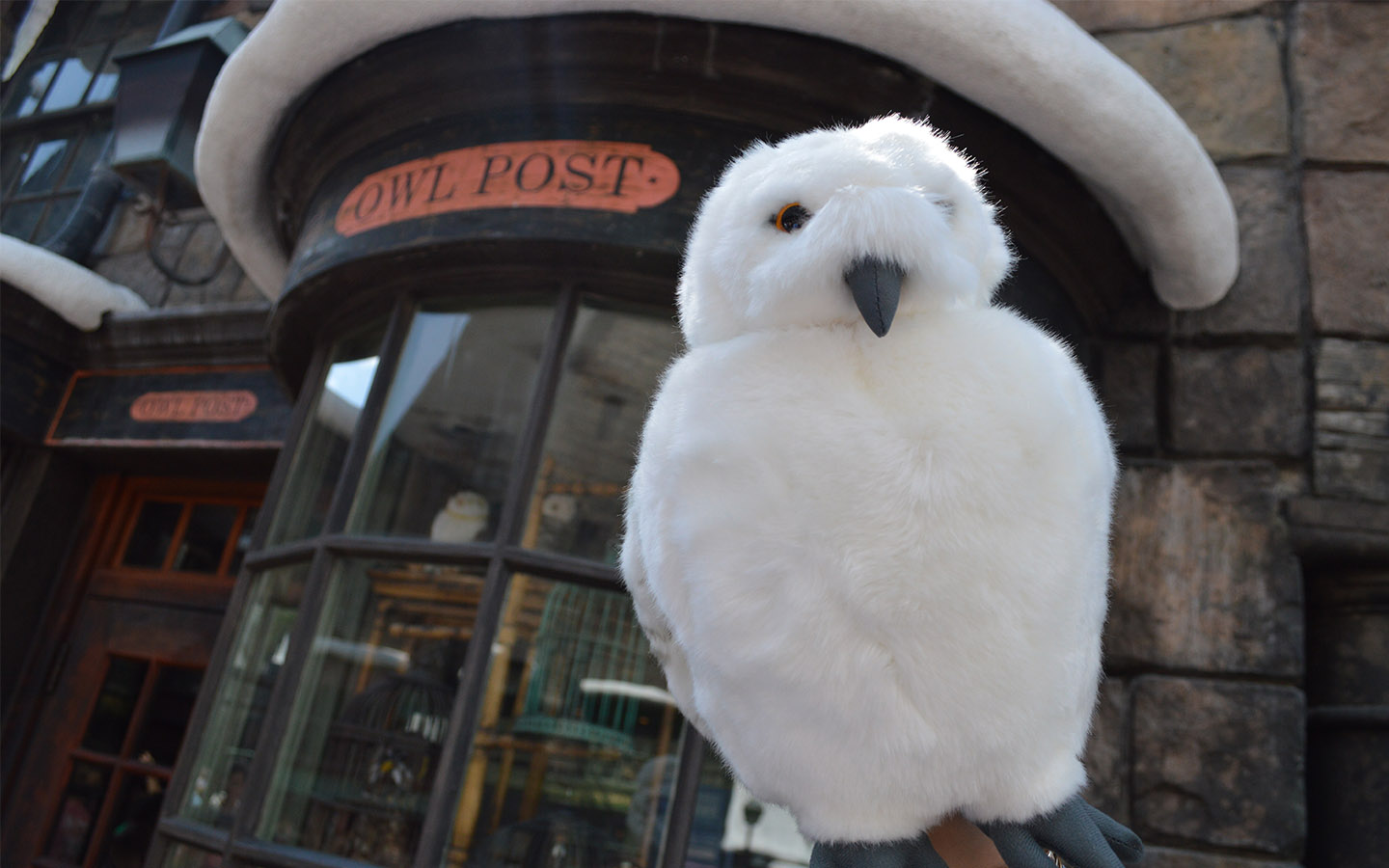 Send Mail From Owl Post In The Wizarding World Of Harry Potter