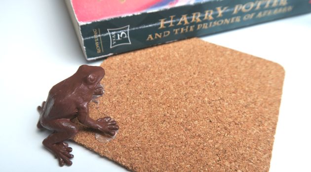 Harry Potter DIY Chocolate Frog Coasters